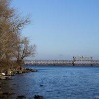 Крюковский мост :: Александр Семеняка