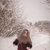 прогулка в лесу :: Ольга Васильева