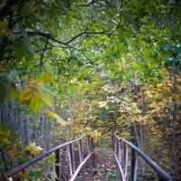Мост на ту сторону... :: Евгения Кирильченко