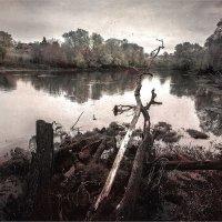 Вид на реку Красивая меча в половодье :: Павел Корнеев