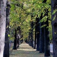 В парке :: Агриппина