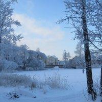 Зимний пейзаж :: Вера Щукина