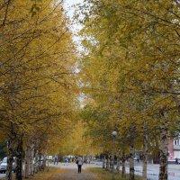 осень в городе :: Alexandr Staroverov