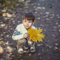 Осень :: Ольга Зимницкая