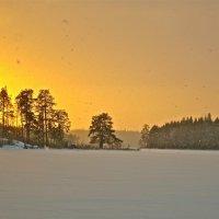 Снегопад с оранжевого неба :: Елена