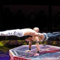 Акробаты :: максим лыков