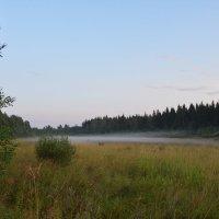 Упал туман :: Ирина Михайловна