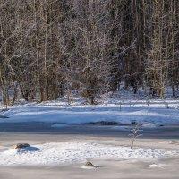 Утро морозное... :: Юлия Бабитко