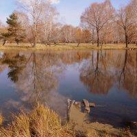 Октябрь...Тихо плещет река, над рекой облака ... :: Елена Ярова