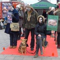 В защиту животных :: Nina Yudicheva