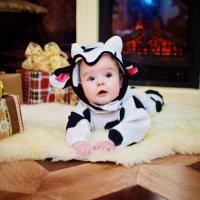 Детская новогодняя фотосессия :: марина алексеева