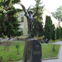 Памятник  пластунам  в  Ивано - Франковске :: Андрей  Васильевич Коляскин