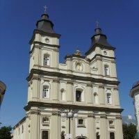 Кафедральный  собор  в  Ивано - Франковске :: Андрей  Васильевич Коляскин