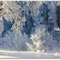 Зима :: Мария Кухта