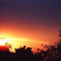 Солнечная комета :: Карина Чечель