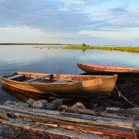 Старые лодки. :: Ирина Копытина