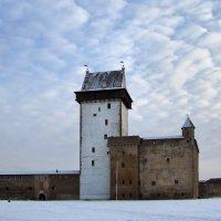 Нарвская крепость :: veera (veerra)