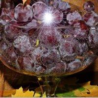 Виноградные фантазии :: Лидия (naum.lidiya)