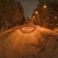 Парк Урицкого :: Александр Шишин