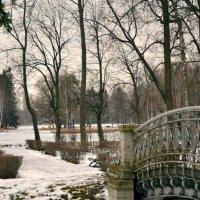 Приближение весны в Гатчине. :: Дарья Гречина