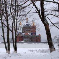 Строящийся храм Свенского монастыря на фоне зимы :: Дубовцев Евгений