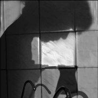 Театр теней :: galina bronnikova