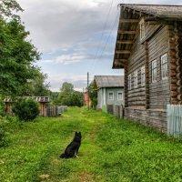 Хозяин деревни.... :: владимир