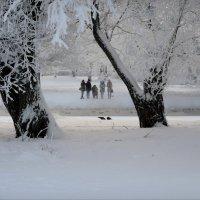 зимняя песенка :: sv.kaschuk
