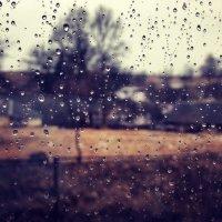 дощ :: Яна Шкирта