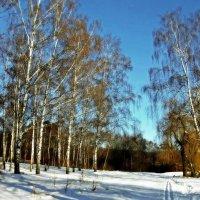 Зима... :: *MIRA* **