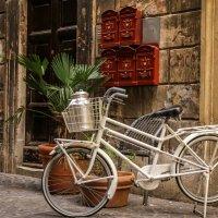 Roma bike :: Alena Kramarenko