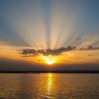 Золотые лучи заката :: Юлия