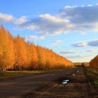 Осеннее  путешествие.... :: Валерия  Полещикова