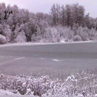 Зима ... :: Svetlana (Lucia) ***
