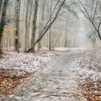 туман.зима. :: юрий иванов