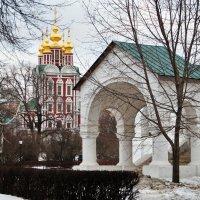 Новодевичий монастырь :: Лара ***