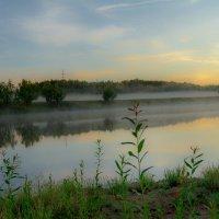 Туман :: Андрей Кузнецов