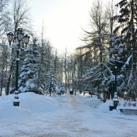 Зимний этюд 36 :: Константин Жирнов