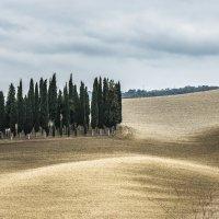 """Кипарисовый островок. Из серии """"Toscana - amore mio"""" :: Ашот ASHOT Григорян GRIGORYAN"""