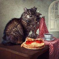 Не все коту масленица... :: Ирина Приходько