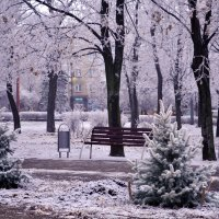 Намеки на зиму :: Zhanna Yrkovskaua