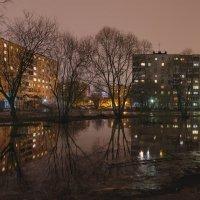 Петербургская Зима :: Александр Кислицын