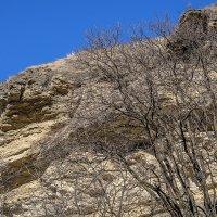 Скалы, нависающие над  дорогой :: Игорь Сикорский