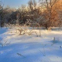 Теплый закат морозного вечера :: Cергей Дмитриев