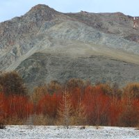 Ранняя весна на Байкале :: Владимир Кузьмищев