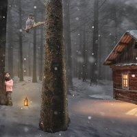 Приключения маленькой Софии в лесу :: Николай Артёмов