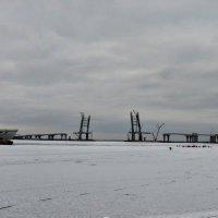 Морской грузопассажирский порт. Санкт-Петербург :: Юрий Тихонов