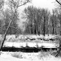 Январский пейзажъ :: Dr. Olver  ( ОлегЪ )