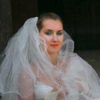 Невеста. :: Vivansi vivansi