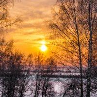 Мороз и солнце :: Сергей Добрыднев